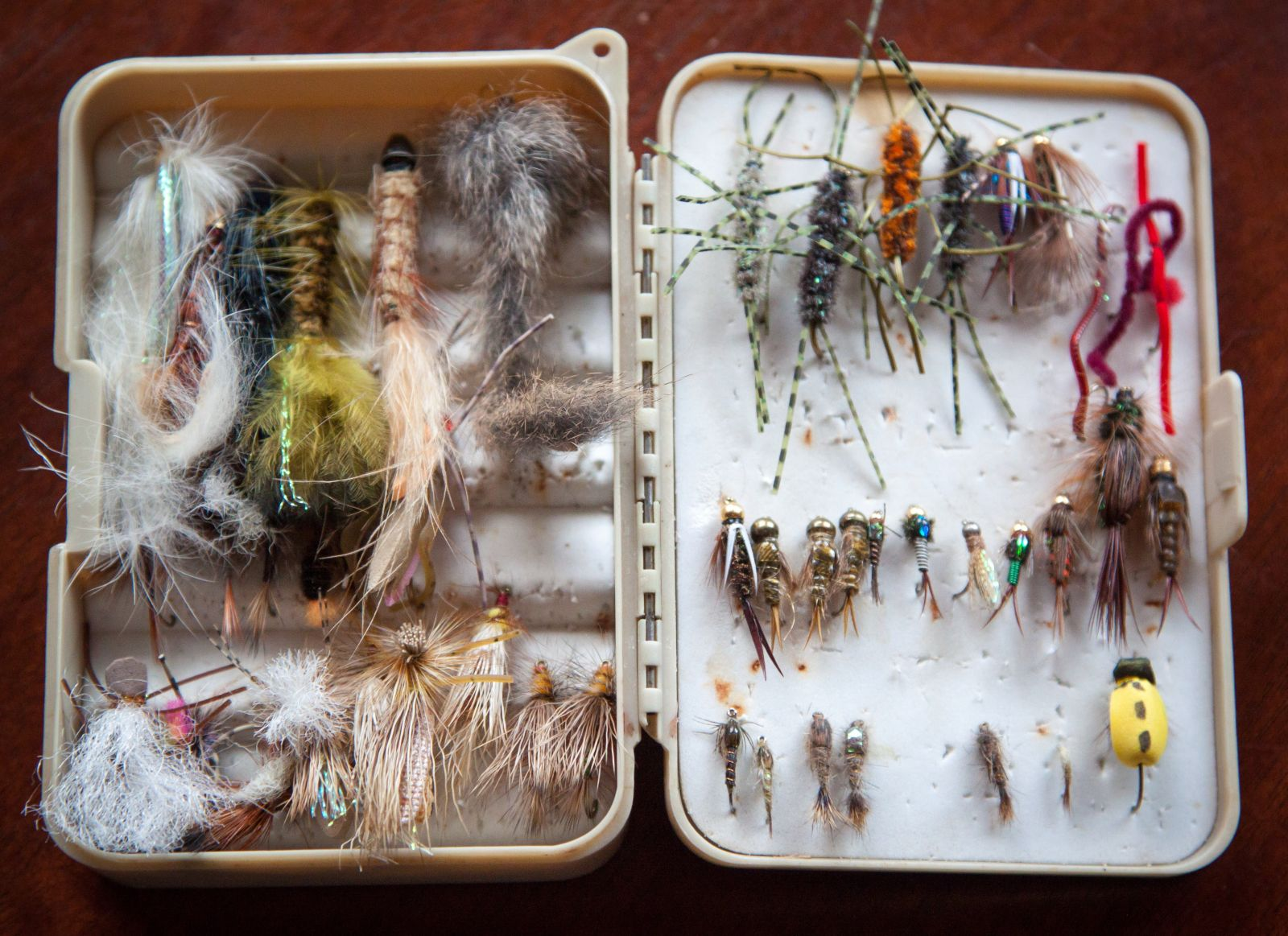 Tackle box for fishing in Anna Maria Island